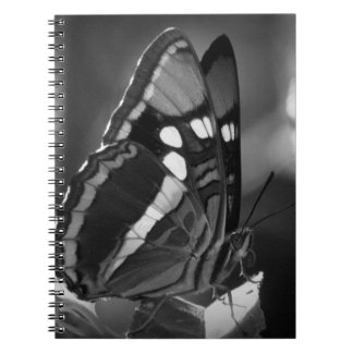 Black and White butterfly Spiral Note Books