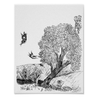 Black and White Butterfly's and Tree Poster
