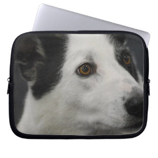 Black and White Canaan Dog Laptop Sleeve