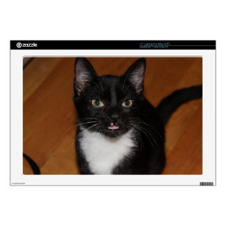 "BLACK AND WHITE CAT 17"" LAPTOP SKINS"