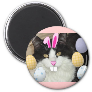 Black and White Cat 2 Inch Round Magnet