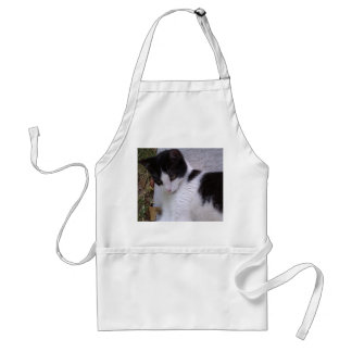 Black and White Cat Adult Apron