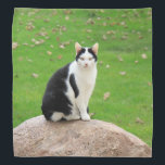 """Black And White Cat Bandana<br><div class=""""desc"""">A black and white cat sitting on a rock decorates this lovely bandana</div>"""