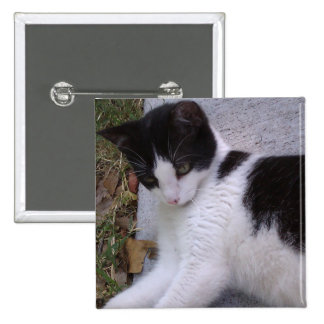 Black and White Cat 2 Inch Square Button