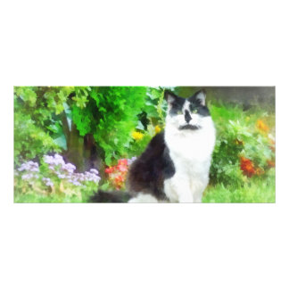 Black and White Cat by Flowers Rack Card