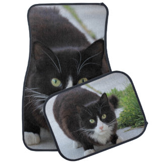 Black and white cat car mat set
