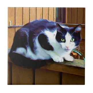 Black and white cat ceramic tile