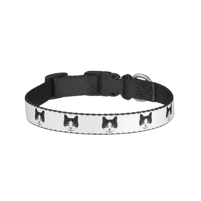 Black and white cat collar with first name