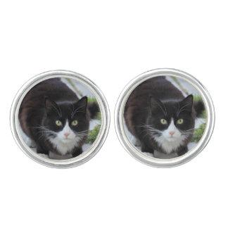 Black and white cat cufflinks