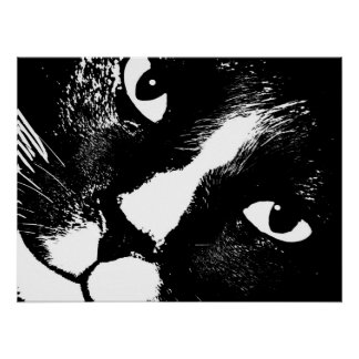 Black and white cat face close up poster
