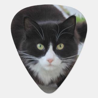 Black and white cat guitar pick