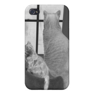 Black and White Cat i iPhone 4/4S Cases