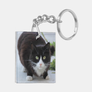 Black and white cat keychain