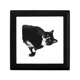 Black and White Cat Looking Up Cutout Keepsake Boxes