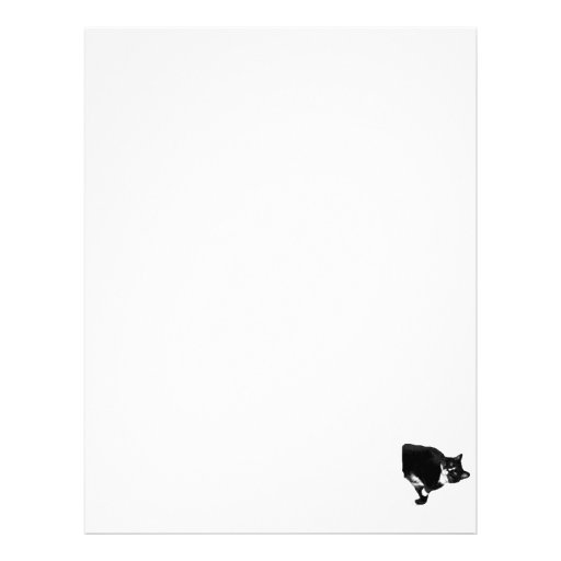 Black and White Cat Looking Up Cutout Letterhead Template