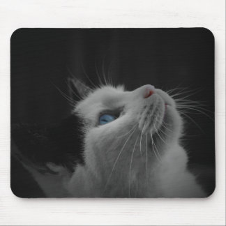Black and White Cat Mouse Pads