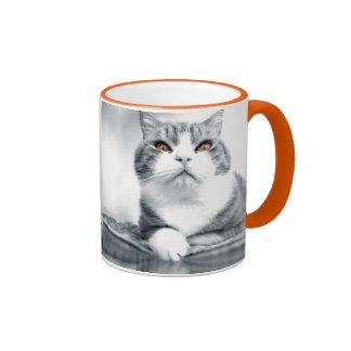 Black and White Cat Photo Ringer Coffee Mug