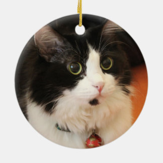 Black and White Cat Round Eyes Circle Ornament