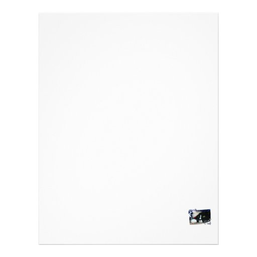 Black and white cat , santa hat, tinsel and a paw letterhead template