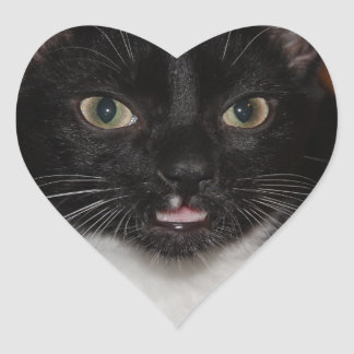 BLACK AND WHITE CAT HEART STICKER