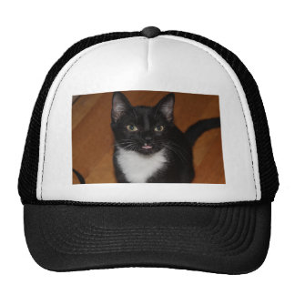 BLACK AND WHITE CAT TRUCKER HAT