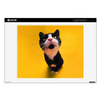 "Black and white cat-tuxedo cat-pet kitten-pet cat 14"" laptop skins"