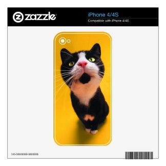 Black and white cat-tuxedo cat-pet kitten-pet cat decals for iPhone 4S