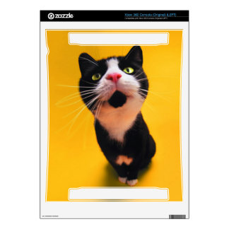 Black and white cat-tuxedo cat-pet kitten-pet cat skin for the xbox 360