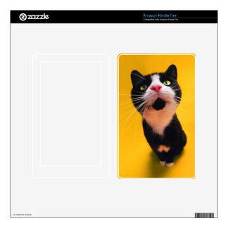 Black and white cat-tuxedo cat-pet kitten-pet cat skins for kindle fire