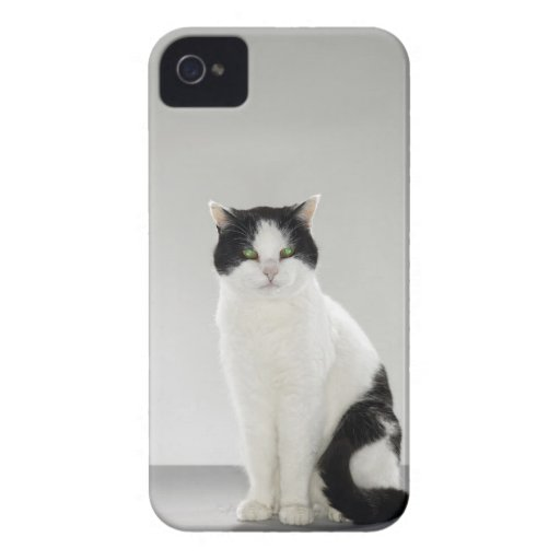 Black and white cat with glowing green eyes iPhone 4 Case-Mate case