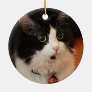 Black and White Cat with Round Eyes Double-Sided Ceramic Round Christmas Ornament
