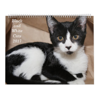 BLACK AND WHITE CATS 2017 CALENDAR
