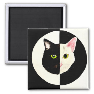Black and white cats face yin and yang magnet