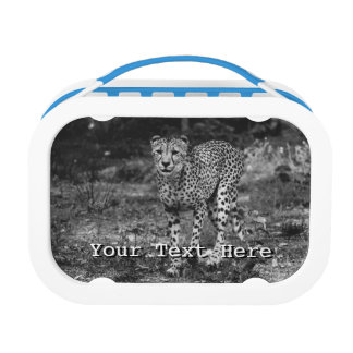 Black and White Cheetah Photograph, Animal Lunch Box