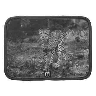 Black and White Cheetah Photograph, Animal Folio Planners