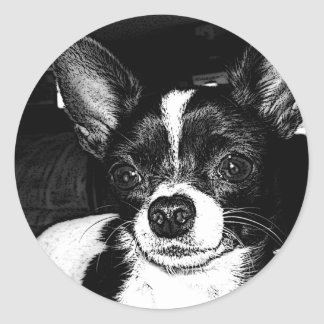 Black and White Chihua Round Stickers