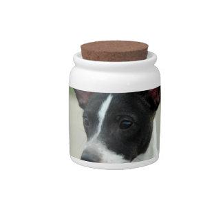 Black and White Chihuahua Candy Jar