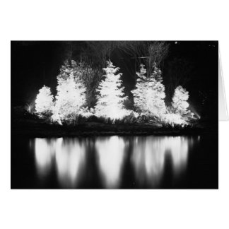Black and White Christmas Tree Greeting Card