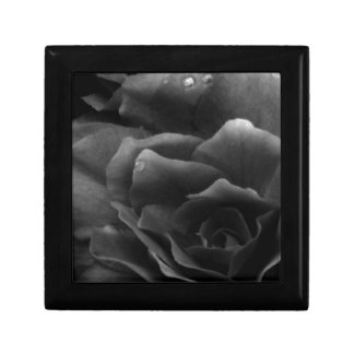 Black and White Close Up of a Double Begonia Jewelry Box