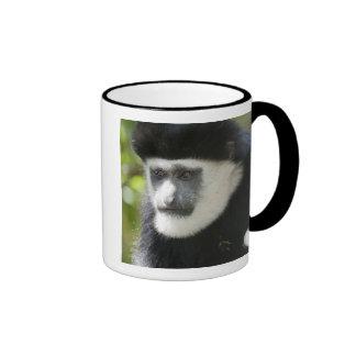 Black and White Colobus Monkey, Colobus Ringer Mug