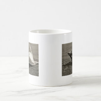 Black and White Conch Shell Coffee Mugs