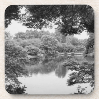 Black and white, cool, unique nature and lake beverage coaster