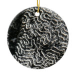 Black and White Coral I Abstract Nature Photo Ceramic Ornament