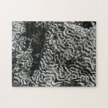 Black and White Coral I Abstract Nature Photo Jigsaw Puzzle