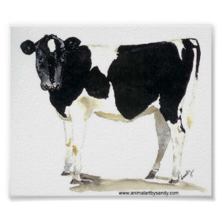 black and white cow canvas poster