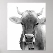 Black and white cow farm animal livestock photo poster