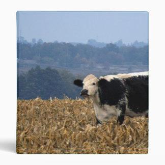 Black and White Cow grazes in freshly plowed field Binder