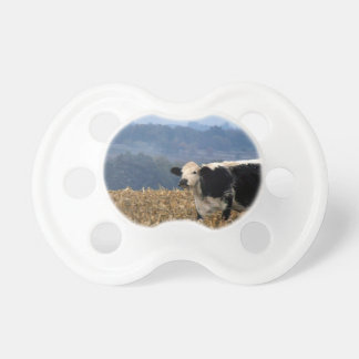 Black and White Cow grazes in freshly plowed field Pacifier