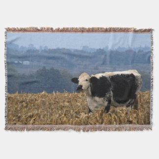 Black and White Cow grazes in freshly plowed field Throw