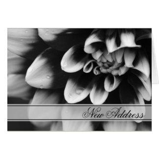 Black and White Dahlia Change of Address Card